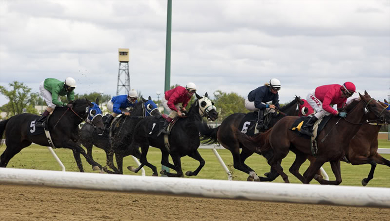 Convert the fun of horse racing into lucrative cash prizes